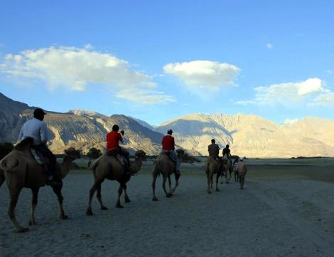 A 1 hour bactrian camel ride was available for INR 100-150.